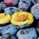 Šljiva Čačanska lepotica karakteristike sadnja za rakiju