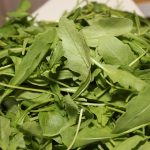Rukola salata uzgoj za zdravlje recept i cena