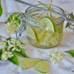 Kako se pravi sok od zove za zdravlje recept i priprema