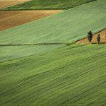 Mere za površinu zemljišta – hektar, ari, metar kvadratni, jutro, lanac, dulum