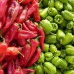 Sorte paprike za plastenik i otvoreno polje