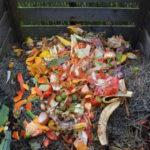Kako napraviti kompost i pravilno kompostiranje