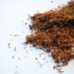Kako napraviti i koristiti organski pesticid od duvana za prskanje biljaka