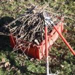 Rezidba: Rezač voća je odgovoran i zahtevan sezonski posao
